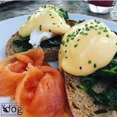 Drovers Dog - Flavour of Australia💥 BRUNCH WEEK 💥 Smoked Salmon Eggs Benedict are our ultimate #brunchgoals! Join Drovers Dog in any three of their locations found at http://bit.ly/droversdognl, and mention the code FoodGuide10 to get 10% off your brunch until the end of May! 👌👌 @droversdog Pic by: @snsalgado
