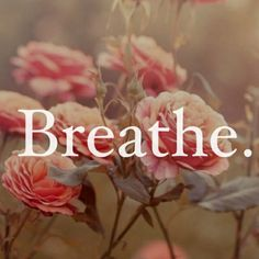 Breathe: May I Be Safe. Breath out, Breathe in focusing on the breath. Breathe in and out gently focusing on each breath. May I Live With Ease . (ease/ confidence that you can navigate through Life) Quotes To Live By, Me Quotes, Just Breathe Quotes, Relax, Tumblr, Jolie Photo, Note To Self, Beautiful Words, Wise Words