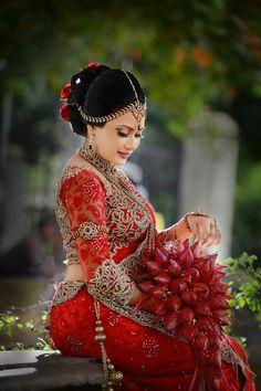Indian Wedding Poses, Wedding Sari, Wedding Attire, Wedding Bride, Wedding Gowns, Dream Wedding, Srilankan Wedding, Bridal Photoshoot, Wedding Costumes