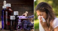 5 huiles essentielles pour résoudre le problème des allergies une fois pour toute !