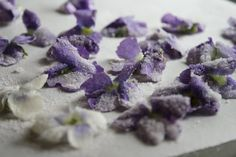 recipes for Candied Violets and Violet Syrup