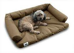 cama para perros - Buscar con Google