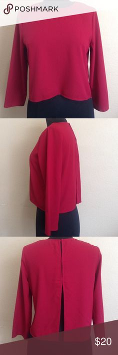 Alythea blouse Long sleeve deep red blouse. Open back with hidden buttons. NWOT Alythea Tops Blouses