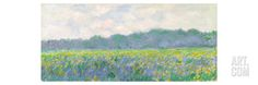 Field of Yellow Irises at Giverny, 1887 Stretched Canvas Print by Claude Monet at Art.com