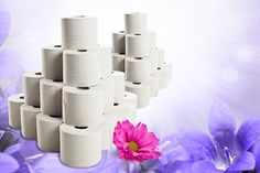 40 Luxury Quilted Toilet Rolls