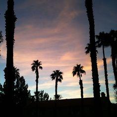 Painted skies #coachillinwithwasteland #coachillin #wasteland #coachella #shopwasteland