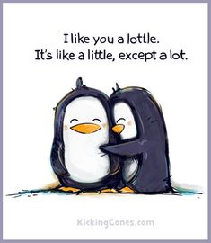 """I like you a lottle. It's like a little, except a lot. The Penguins. I LOVE penguins. Me Quotes, Funny Quotes, Sister Quotes, Friend Quotes, Couple Quotes, Funny Gifs, My Sun And Stars, Youre My Person, Love You"