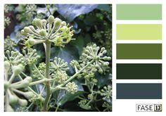 Kleurinspiratie voor je interieur! ~ #colourinspiration by #FASE13 ~ Ivy Green hues
