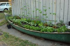 this makes me smile...must find canoe for garden