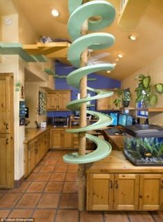 """""""These cat-friendly upgrades include a spiral walkway, tunnels, ramps, climbing poles, scratching posts, kitten-sized stairs, and much more.""""  Lucky cats!"""