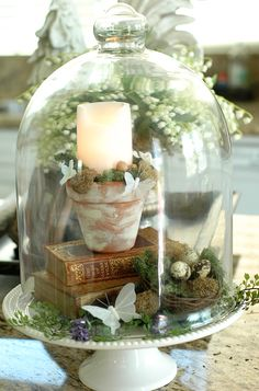 Life in Pictures.: Make an Easy and Inexpensive Easter/Spring Centerpiece Spring Home Decor, Diy Home Decor, Room Decor, Cloche Decor, The Bell Jar, Bell Jars, Glass Bell Jar, Deco Floral, Country Farmhouse Decor