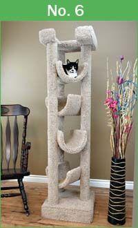 Premium Cat Trees Review With Video 2021 Loveourcat Com Cat Condo Cat Tree Cat Furniture