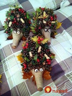 Vzala len rozrezanú plastovú fľašu a pár šišiek: Tento jesenný nápad nestojí nič, ale obdivovať ho bude úplne každý! Pinecone Crafts Kids, Pine Cone Crafts, Autumn Crafts, Fall Crafts For Kids, Nature Crafts, Decor Crafts, Diy For Kids, Crafts To Make, Holiday Crafts