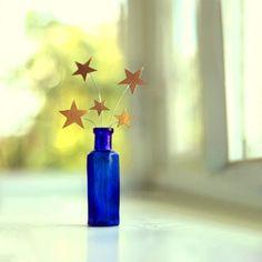 Estrelas ou flores?