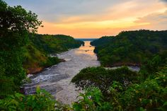Photo Roundup: These Pictures Will Make You Want to Drop Everything and Visit Uganda https://wildlives.co/2017/05/21/photo-roundup-these-pictures-will-make-you-want-to-drop-everything-and-visit-uganda/?utm_campaign=crowdfire&utm_content=crowdfire&utm_medium=social&utm_source=pinterest