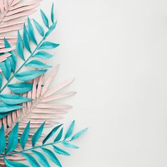 Blue and pink leaves dyed on white backg. Ipad Background, Poster Background Design, Instagram Background, Collage Background, Photo Wall Collage, Background Pictures, Leaves Wallpaper Iphone, Wallpaper S, Wallpaper Backgrounds