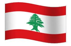 Image result for lebanon images flag