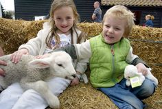 Lee Valley Park Farm, meet the animals. http://www.visitessex.com/thedms.aspx?dms=13=0220594