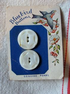 Rare 1920s Antique Bluebird Genuine Pearl Button by reginasstudio,