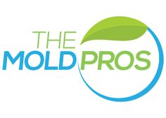 Featured Client & Project: The Mold Pros - http://aspireid.com/portfolio/the-mold-pros/
