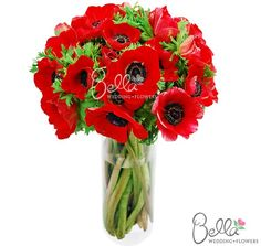 Fresh anemone flowers are a beautifully feminine flower that packs a bold, graphic punch, working equally well with either a vintage or modern-style wedding. Red anemones have brightly saturated, red fluttery petals with high-contrast black centers. Anemone flowers (also called 'wind flowers') are said to represent anticipation and luck. Take advantage of Free Shipping on your wholesale anemone flowers!