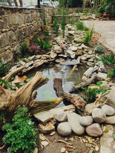 Palms Garden Square (Wilderness, South Africa): Top Tips Before You Go - TripAdvisor