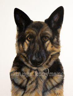 German Shepherd / Duitse Herder Petportrait dierenschilderij dogart by Tanja Kooymans portret van een politiehond