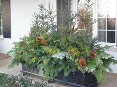 Winter Window Boxes, Christmas Window Boxes, Christmas Urns, Christmas Garden, Outdoor Christmas Planters, Outside Christmas Decorations, Outdoor Planters, Evergreen Planters, Winter Container Gardening
