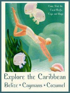Caribbean Sea Coral Reef, Diver, Belize, Cayman Islands, Cozumel Sea Shell, Fish, Vintage Poster Repro Explore the Caribbean SE...