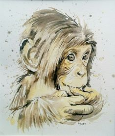 Baby chimpanzee watercolour painting in splash style. Tiger Tattoo Small, White Tiger Tattoo, Tiger Artwork, Tiger Painting, Tiger Drawing, Watercolor Books, Watercolor Animals, Watercolour Painting, Portrait Acrylic