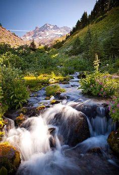 //Timberline Trail, Mount Hood, Oregon//