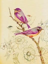 Resultado de imagen para láminas antiguas de pájaros