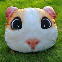 Description : ------------- Cute Cat Face Pillow With Core Adorable design cushion with soft texture! Perfect for gift and home decoration! Filling: PP Cotton. Cute Cat Face, Cat Pillow, Cushions, Pillows, Rabbit, Core, Plush, Texture, Decoration