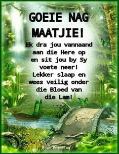 Goeie Nag, Afrikaans, Good Night Quotes, Sleep Tight, Day Wishes, Bible, Poems, Do Your Thing, Biblia
