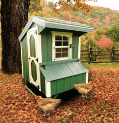 This is cute, but kinda small. Might work if all you had were two hens...