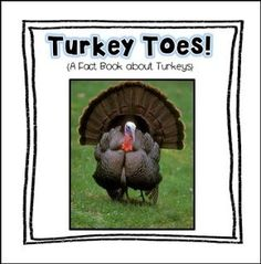 "FREE LANGUAGE ARTS LESSON - ""Turkey Toes Fact Book Freebie!"" - Go to The Best of Teacher Entrepreneurs for this and hundreds of free lessons. Kindergarten - 3rd Grade     #FreeLesson    #LanguageArts     #Thanksgiving      http://thebestofteacherentrepreneursiv.blogspot.com.co/2016/10/free-language-arts-lesson-turkey-toes.html"
