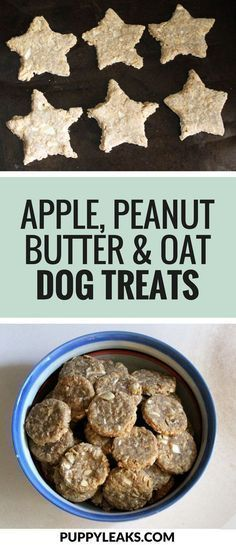 Looking for an easy homemade dog treat recipe? Try these easy DIY dog treats made with apple, peanut butter & oats.