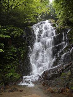 白糸の滝 | 夏の絶景&納涼体験スポット | 九州カラフルNAVI