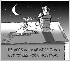 The reason more kids don't get ponies for Christmas. Too bad Santa doesn't know the Method ; Pretty Horses, Horse Love, Horse Girl, Equestrian Funny, Equestrian Quotes, Equestrian Problems, Funny Horse Memes, Funny Horses, Horse Humor