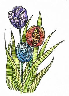 tulips 3 by Judy's Creative Doodling, via Flickr