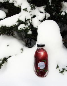 #Winter in #Michigan is beautiful, but lately the temps have been waaay too low! Cheer up with Ellis Island Tropical Tea. It'll give you a dose of #HealthyHibiscus and a kick of citrus. www.ellisislandtea.com