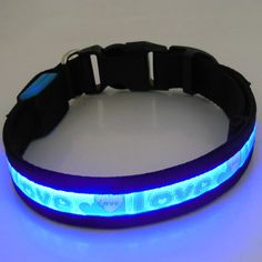 blue led dog collar Led Dog Collar, Pets, Lady, Blue, Accessories, Animals And Pets, Jewelry Accessories