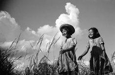 Assista à íntegra do documentário Ultrapassando fronteiras: Os 120 anos de Japão…