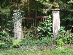 Front Gate of Abandoned Cemetery