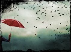 Trilhas de Luz: Ventos e Pássaros e Borboletas que Revoam no Céu d...