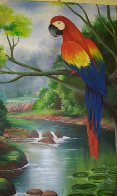 Bird Paintings On Canvas, Bird Artwork, Watercolor Artwork, Abstract Canvas, Art Drawings For Kids, Colorful Drawings, Animal Drawings, Tropical Art, Tropical Birds