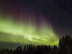 Heavenly Showers © Jathin Premjith (India)  Aurora boreale vicino al Circolo Polare Artico con Orione, il Toro e le Pleiadi sulla destra.