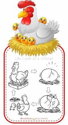 Printable Handwriting Worksheets, Kindergarten Math Games, Montessori Preschool, Life Cycles, Preschool Activities, Puppets, Easter, Kids Rugs, Science