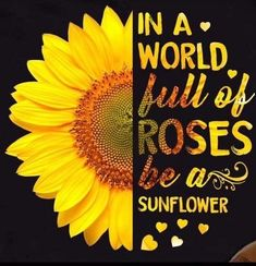helps you draw out your unique gifts and discover your true potential. Sunflower Quotes, Sunflower Pictures, Sunflower Shirt, Sunflower Party, Sunshine Quotes, Sunflower Wallpaper, Cute Quotes, Cover Photos, Quotes To Live By