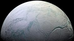 Enceladus has the conditions, including a key energy source, to enable microbes to exist, Nasa says.